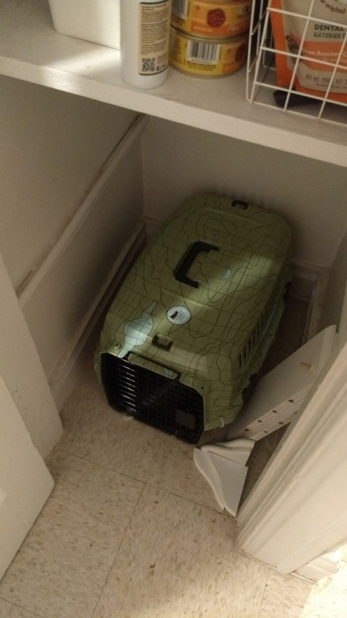 You couldn't even see the pet carrier before.